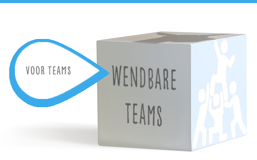 wendbare teams agile en lean
